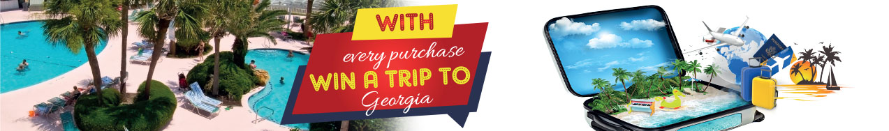 Georgia Campaign