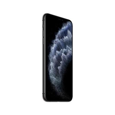 Apple IPhone 11 Pro Max Space Grey 256 GB (MWHJ2AE/A-PO)