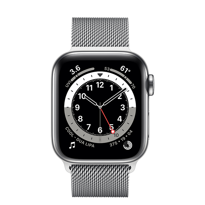 Apple Watch Series 6 GPS + Cellular, 40mm Silver Stainless Steel Case with Silver Milanese Loop M06U3AE/A