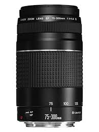 Canon EF 75–300mm Telephoto Zoom Lens