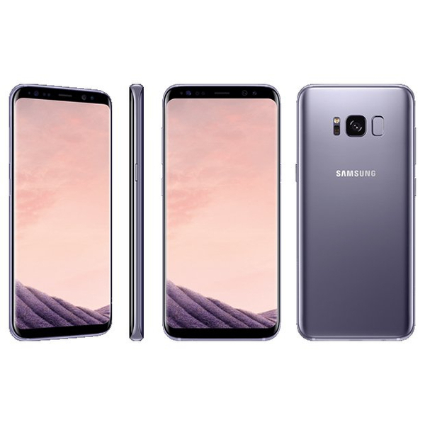 Samsung Galaxy S8 Smartphone, Violet  (SMG950FW-64GBV-EC)