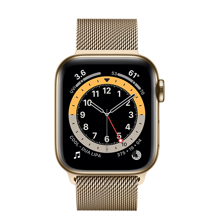 Apple Watch Series 6 GPS + Cellular, 40mm Gold Stainless Steel Case with Gold Milanese Loop M06W3AE/A